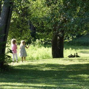 2 Mädchen schauen zu Enten im Garten