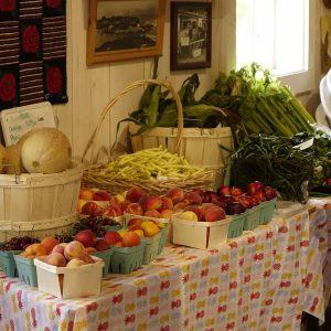 frisches Obst aus dem Sunnybrook mill Market