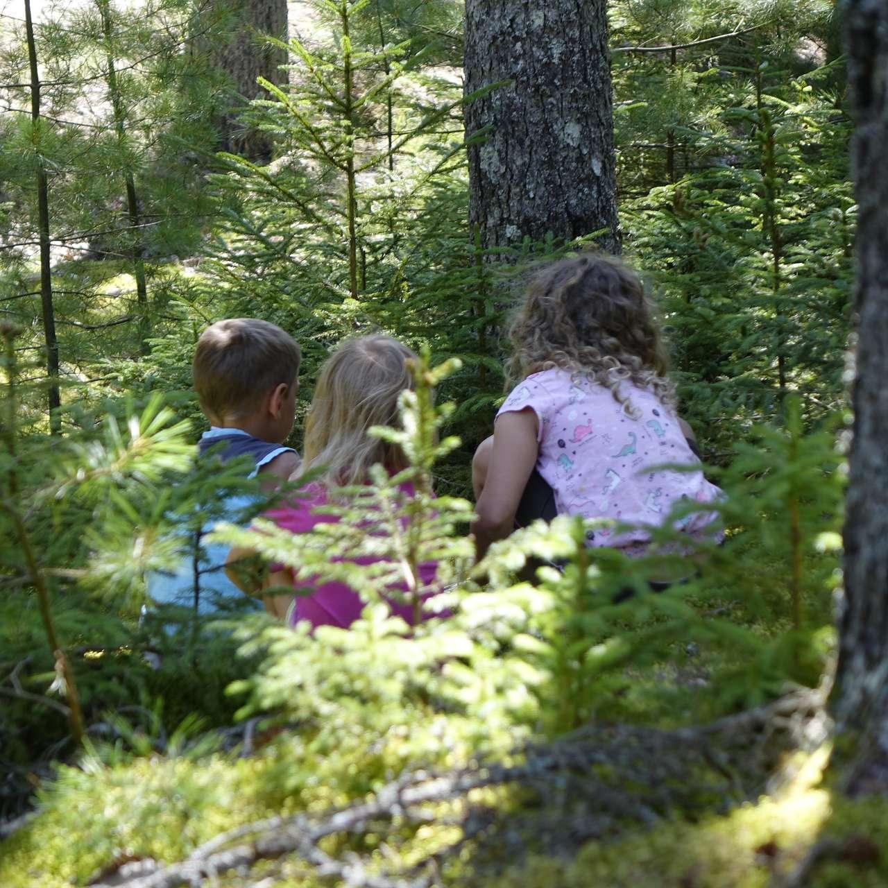 3 kinder spielen im Wald und entdecken etwas