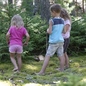 drei Kinder stehen und überlegen im Wald