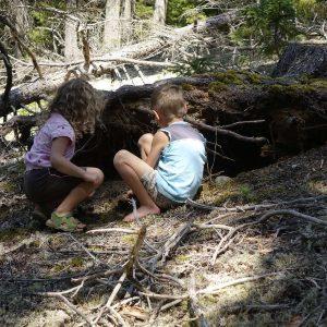 2 Kinder spielen und werkeln an einer Baumwurzel