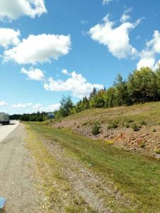 Bild vom Highway mit Blick auf Bäume
